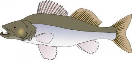 Big Fish Candat Animal clip art