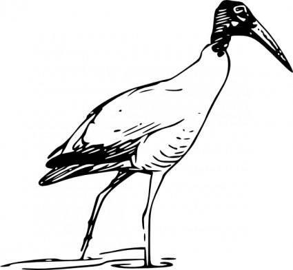 Ibis Bird Walking In Lake clip art