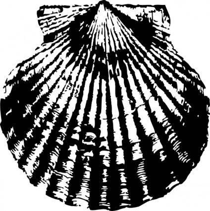 free vector Scallop clip art