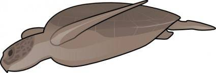 Swimming Turtle clip art