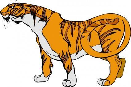 free vector Tigre01 clip art