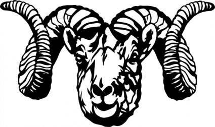 Dall Sheep Ram clip art