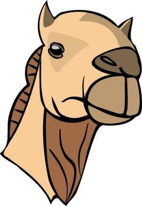 Camel Head clip art