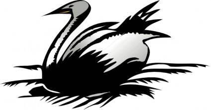 free vector Cigno clip art