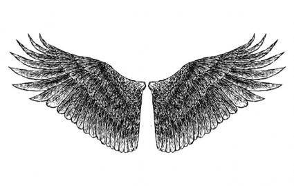 free vector HandDrawn Wings