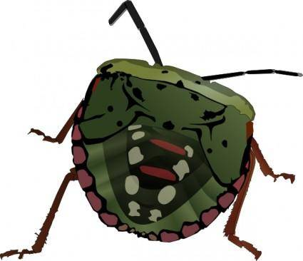 free vector Stink Bug clip art