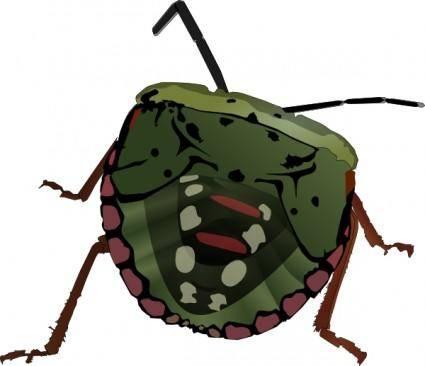 Stink Bug clip art