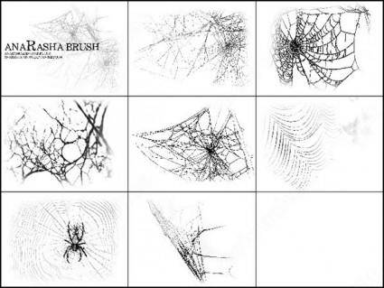 free vector Spiders web brush