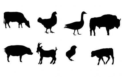 Farm animals Vector graphics