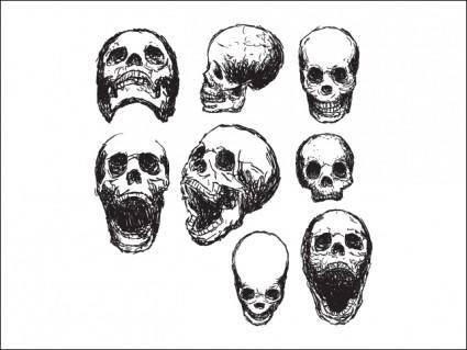 free vector Scribble Skulls
