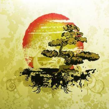Bonsai illustration vintage
