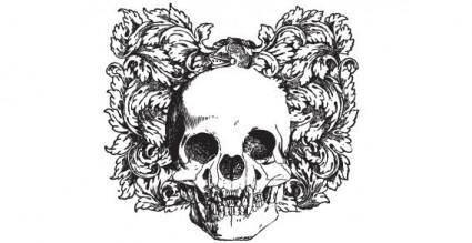 free vector Vector skull
