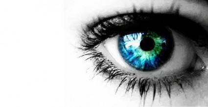 Eye 13816