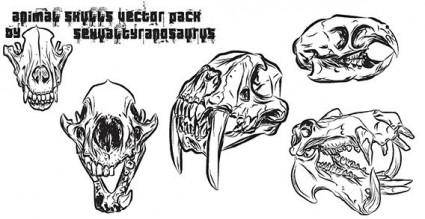 free vector Animal skulls vector pack