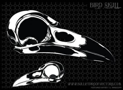 free vector Free Bird Skull