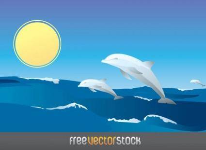 free vector Happy Dolphins