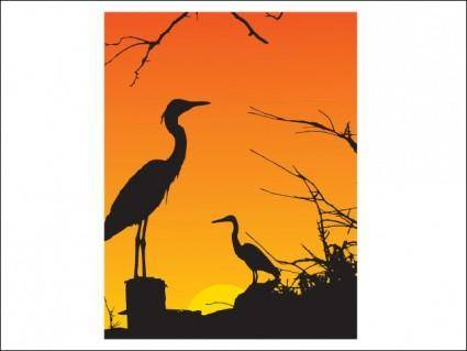 free vector Two Herons Resting