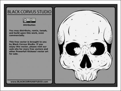 free vector Human Skull