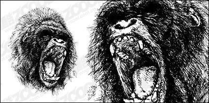 free vector Ferocious gorilla vector material