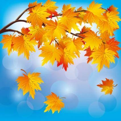free vector Beautiful autumn leaf background 05 vector