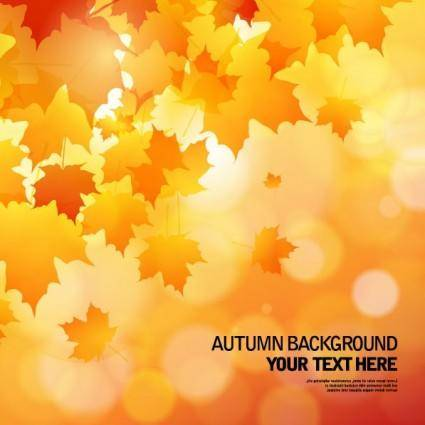 free vector Beautiful autumn background 02 vector
