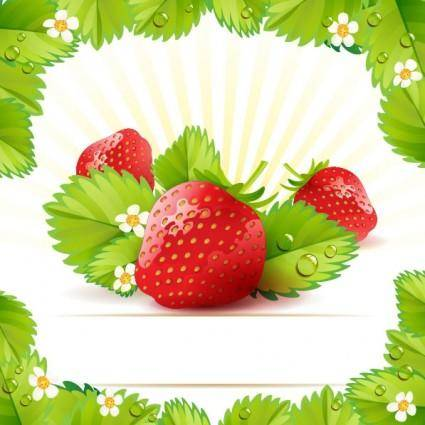 Strawberry theme background 01 vector