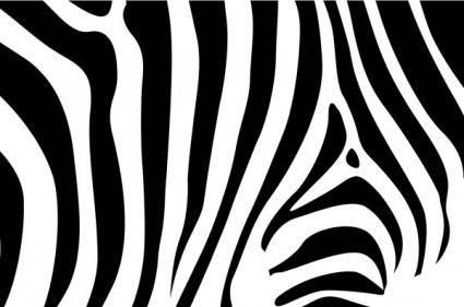 free vector Zebra background