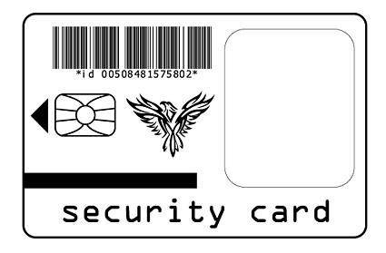 free vector Security card vector