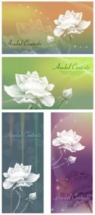 White roses and vector fantasy background
