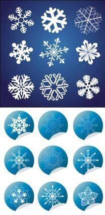 All kinds of snow and wrap angle icon vector