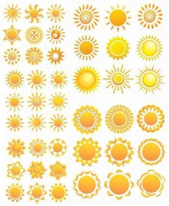 Variety of sunflower patterns vector