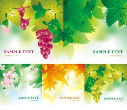 free vector Leaves flowers fruits vector