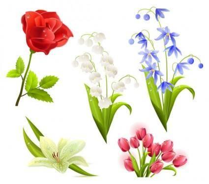 free vector Flowers flower beautiful 5 vector