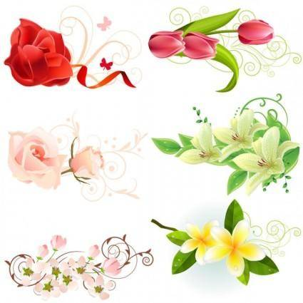 Beautiful flowers vector