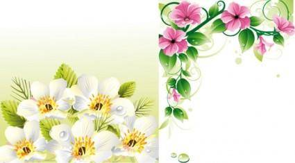 Flower border u0026amp background vector