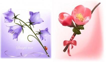 Beautiful flowers vector 20824