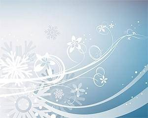 Snow flower and the trend pattern vector