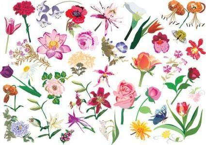 free vector Beautiful flower pattern style 02 vector