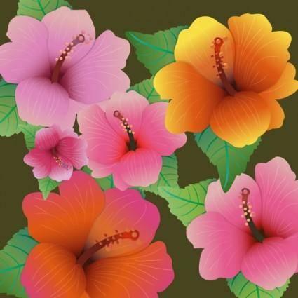 free vector Hibiscus flowers