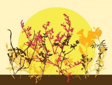 free vector Autumn Flowers