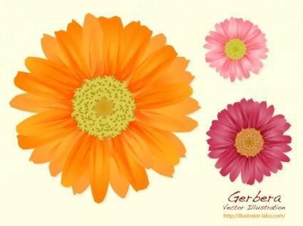 free vector Summer Flowers