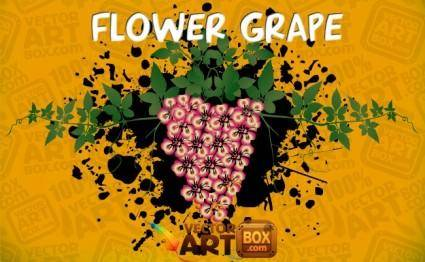 free vector Vector Flower Grape