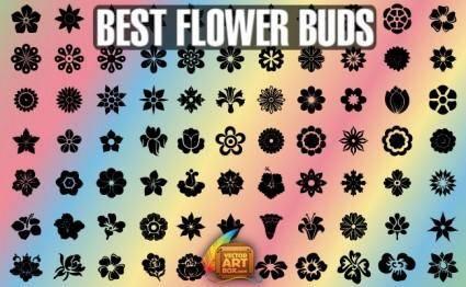 Best Flower Buds
