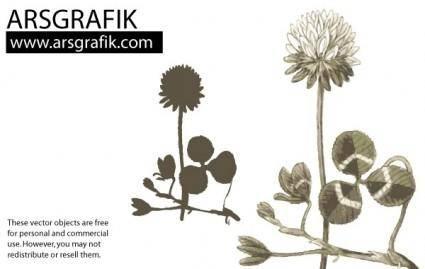 free vector Dandelion Flower Vector