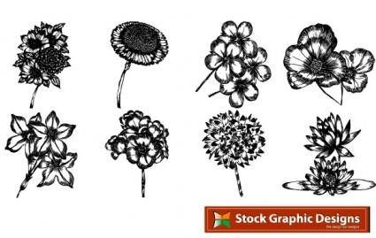 free vector Free beautiful vector flowers pack. In pack 15 flower designs in eps format
