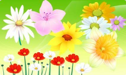 free vector Free Vector Flowers 06