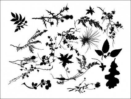 free vector SP3KTR Floral