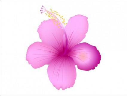 free vector Summer Flower