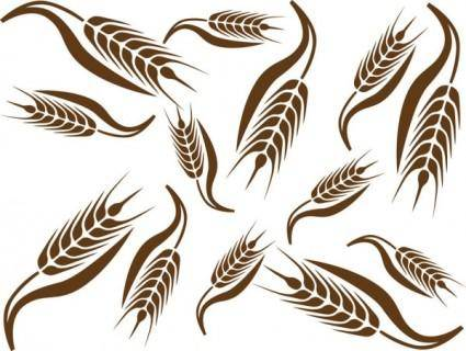 free vector Wheat pattern 02 vector