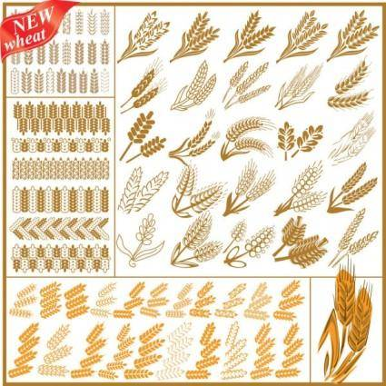 Wheat pattern 04 vector